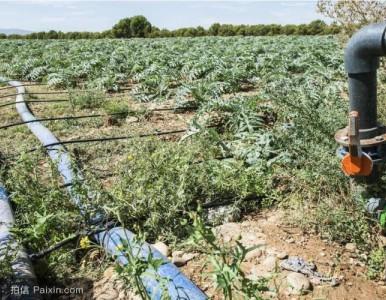 瑜龙牌园林绿化专用PE灌溉管材